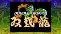 Jaquette du jeu Double Dragon