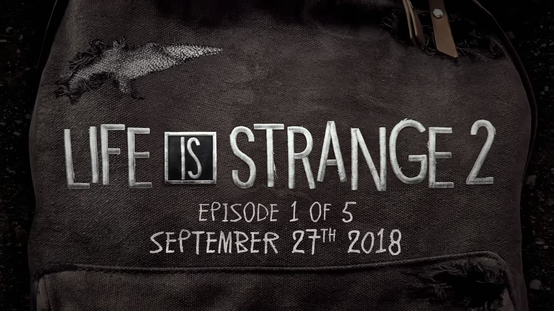 Jaquette Life is Strange 2 : Épisode 1 - Roads
