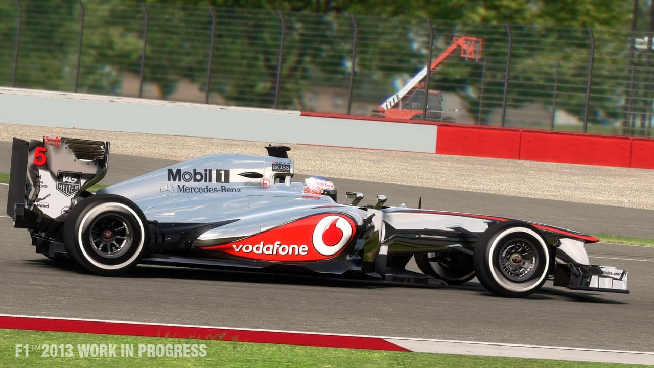 F1 2013 - Image n°8