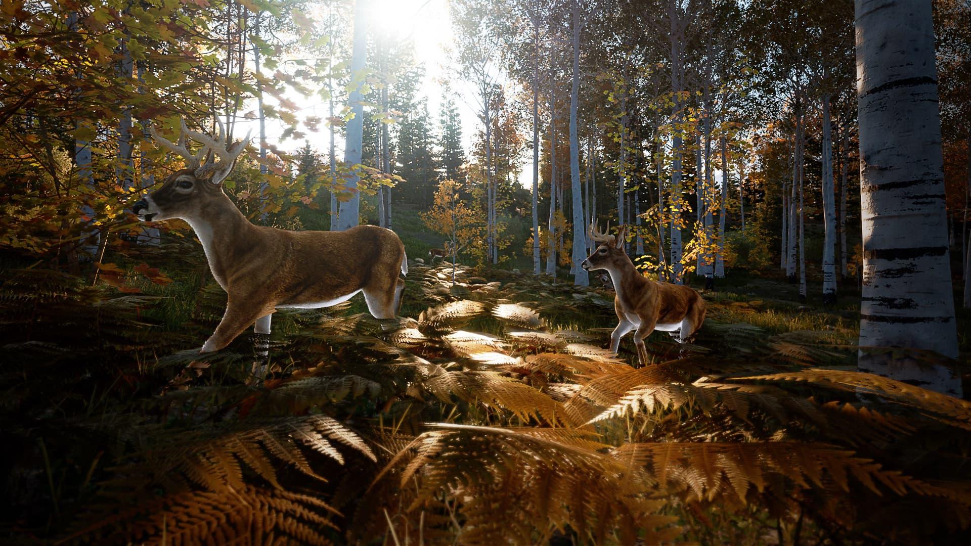 Xbox Series X & S Hunting Simulator 2