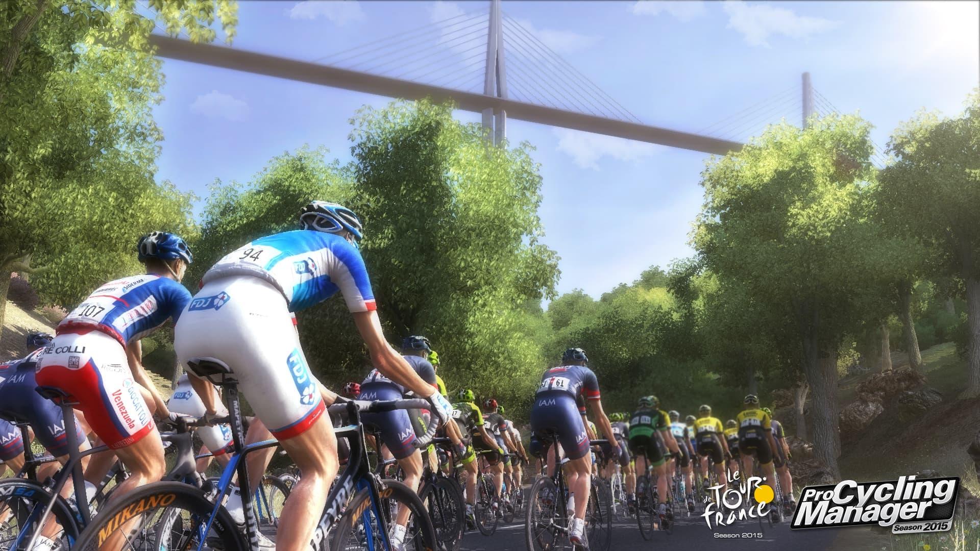 Le Tour de France 2015 - Image n°6