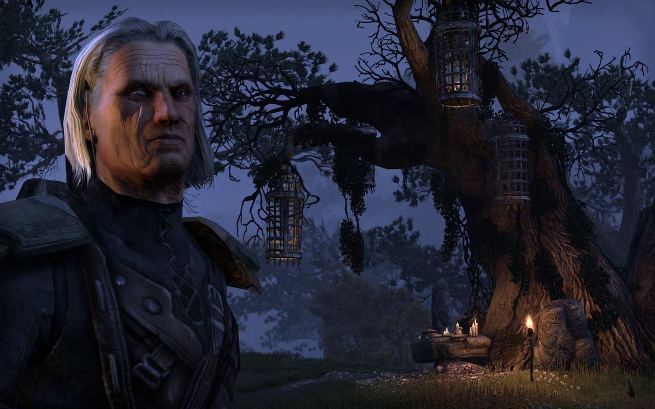 The Elder Scrolls Online - Image n°6
