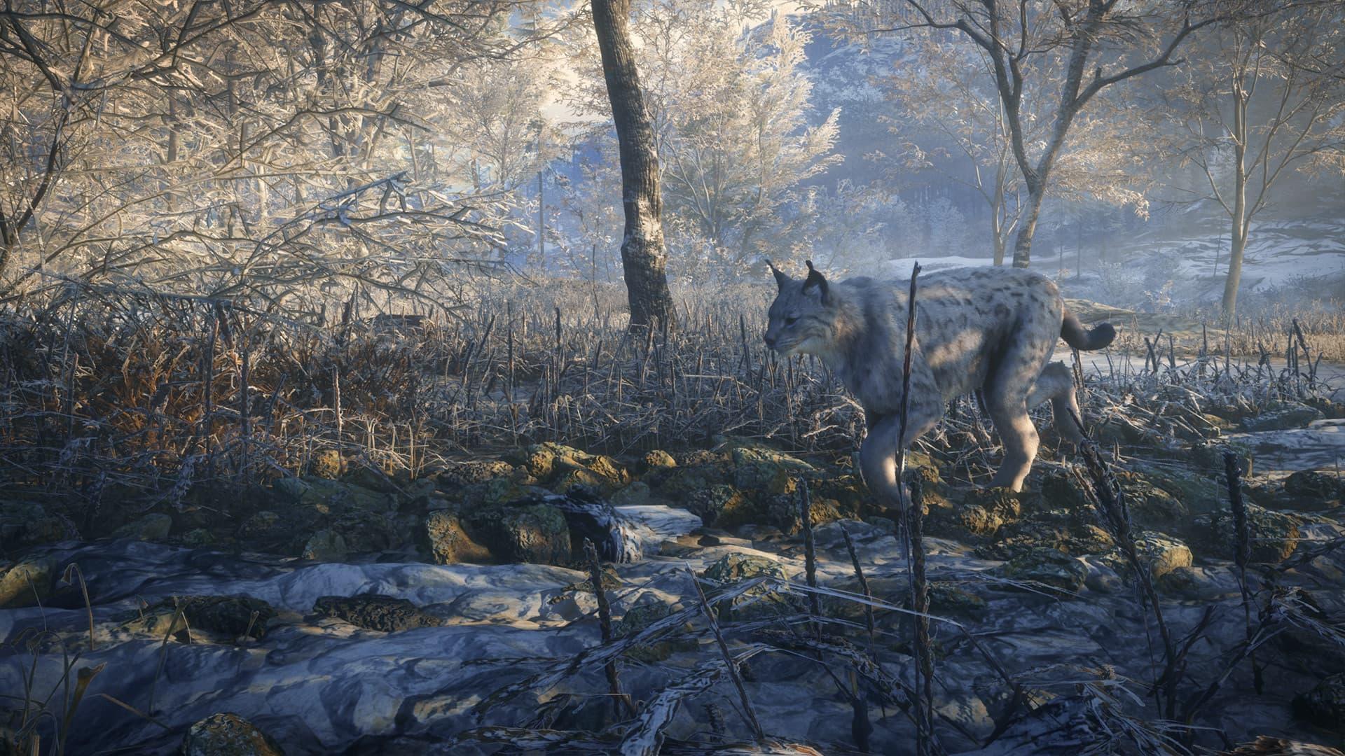 theHunter: Call of the Wild - Medved-Taiga Xbox