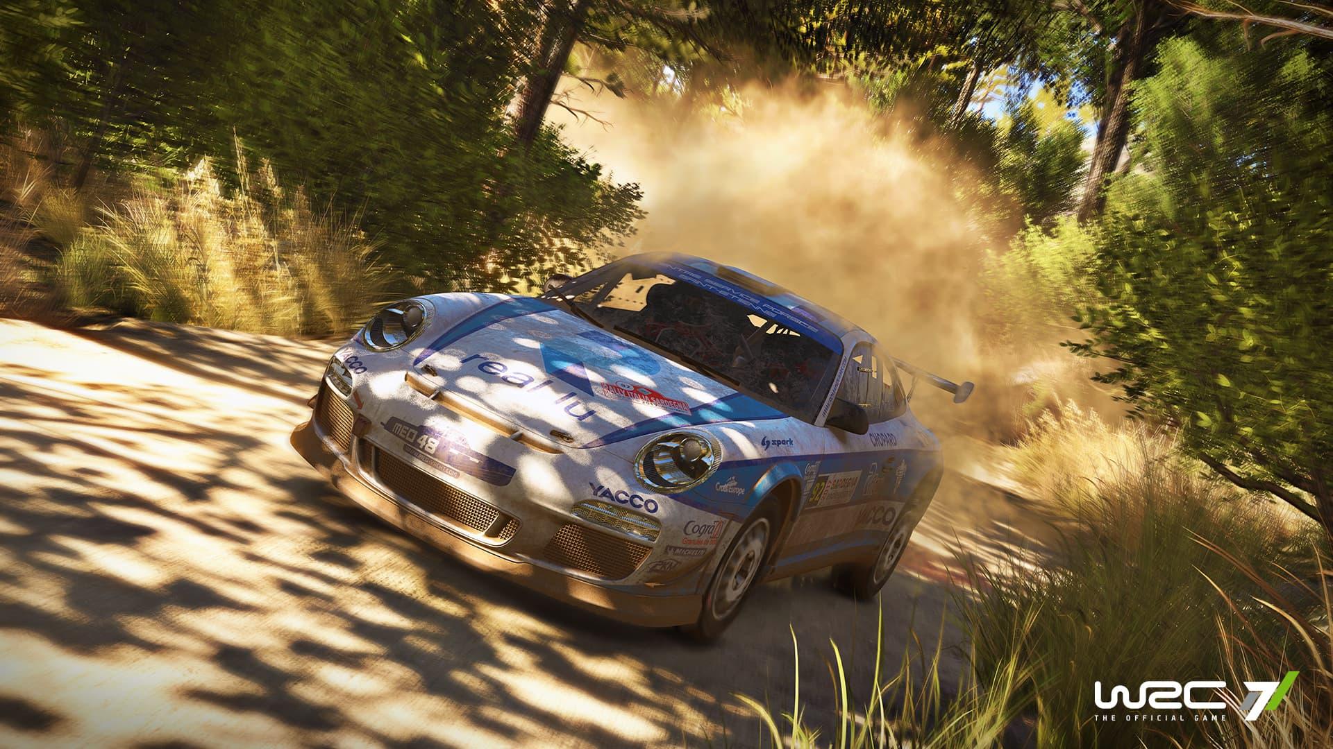 WRC 7 - Image n°6
