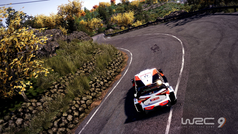 WRC 9 Xbox Series X & S